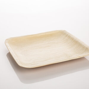 Palm Leaf Plate, Square Medium size Pack of 10 Plates