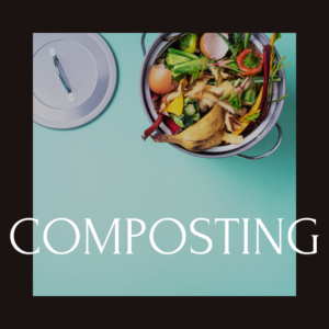 Read more about the article Composting & why we all should do it?